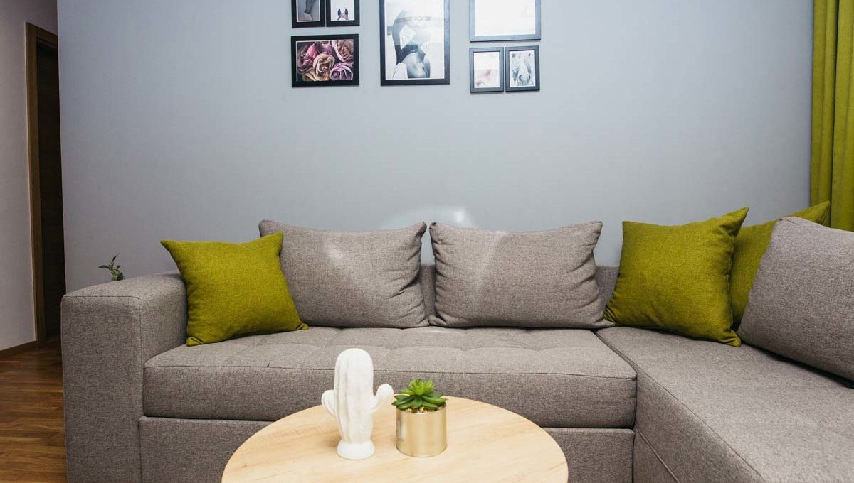 Apartment A14 gray couch with green pillows
